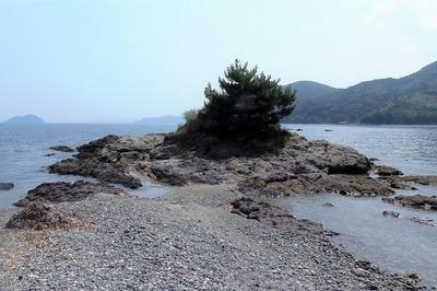 満潮時は岩島.jpg