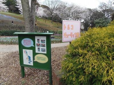 火の山公園トルコチューリップ園案内板1.jpg