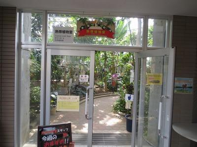 熱帯植物室.jpg