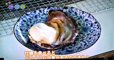 牡蠣の効果.jpg