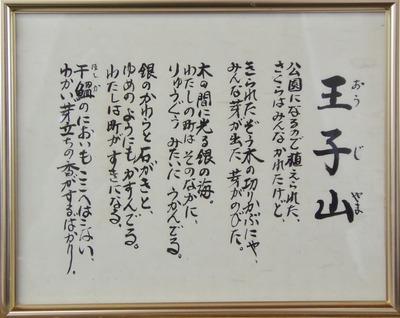 王子山1.jpg