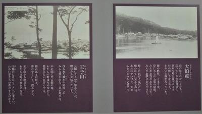 王子山と大泊港.jpg