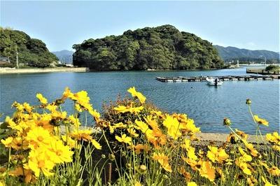 王子山と季節の花1.jpg