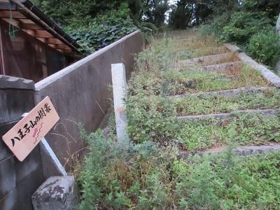 王子山の樹叢入口.jpg