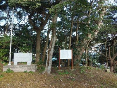 王子山の樹叢説明1.jpg