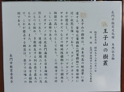 王子山の樹叢説明2.jpg
