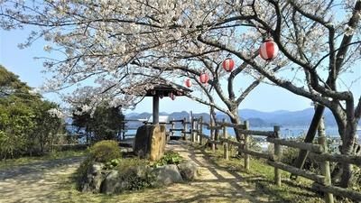 王子山公園の桜2.jpg