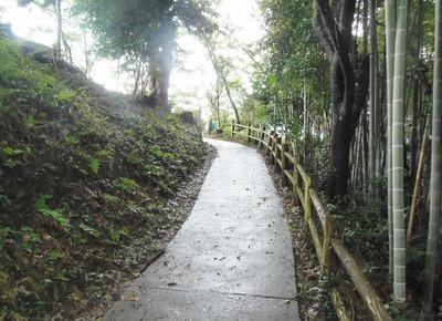 王子山公園への道.jpg