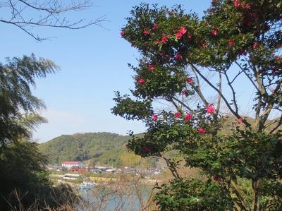 王子山公園入口の季節の花.jpg