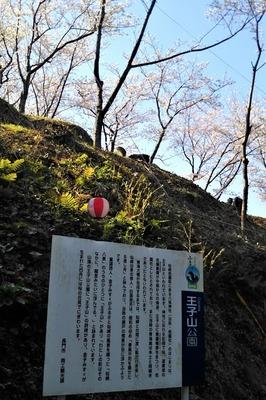 王子山公園案内.jpg