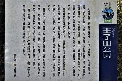 王子山説明.jpg