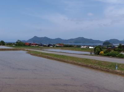 田植え前のたんぼと青海島1.jpg