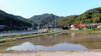 田植え準備が進む青海地区3.jpg