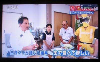 白オクラと話した結果・生で食べてほしい 1.jpg