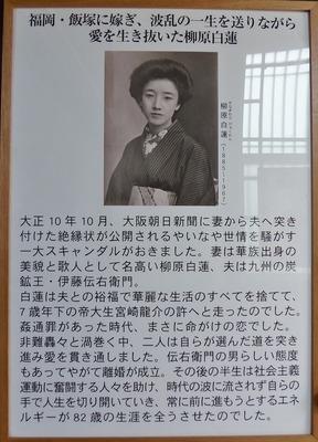白蓮紹介.jpg