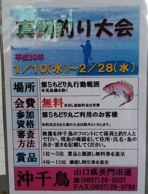 真鯛釣り大会案内.jpg