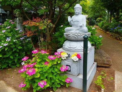 石仏と紫陽花.jpg