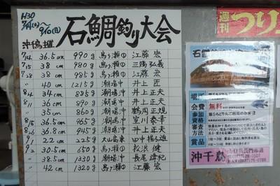 石鯛釣り大会途中結果.jpg