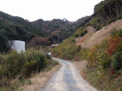 砂防ダムへの道.jpg