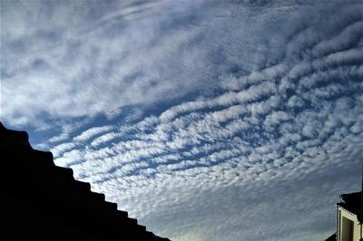 秋の雲2.jpg