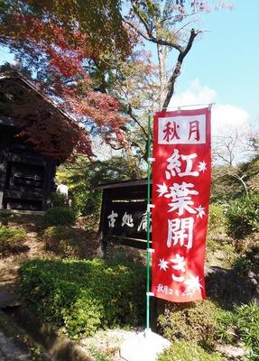 秋月の秋色3.jpg