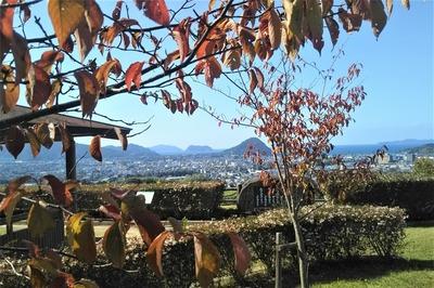 秋色と萩市街地2.jpg