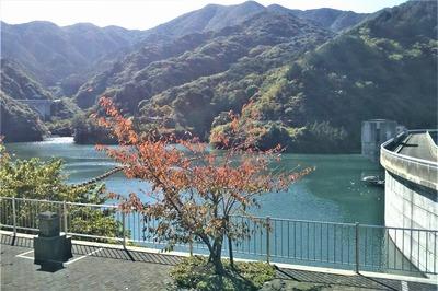 秋色の湯免ダム1.jpg