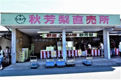 秋芳梨直売所.jpg