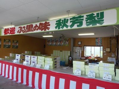 秋芳梨直売所2.jpg