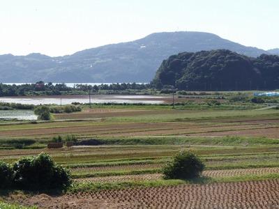稲刈り後の田んぼ1.jpg