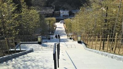 竹林の階段1.jpg