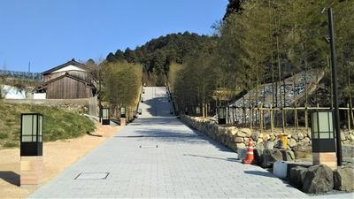 竹林の階段2.jpg