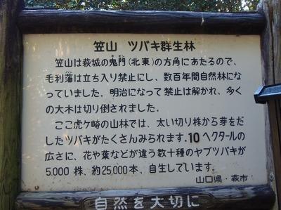 笠山ツバキ群生林説明板.jpg