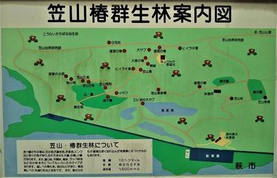 笠山椿群生林案内図.jpg