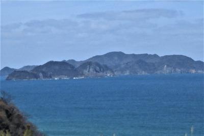 笹島・大島・青海島.jpg