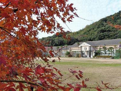 紅葉と青海島共和国.jpg