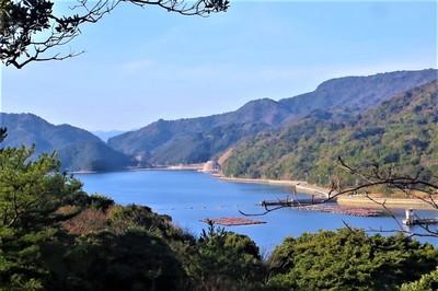 紫津浦湾.jpg