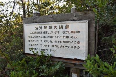 紫津浦湾の捕鯨説明.jpg