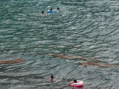 船越の浜・海水浴2.jpg
