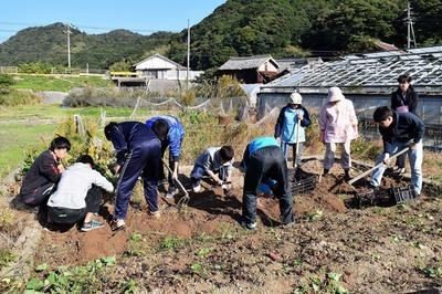 芋掘り1.jpg