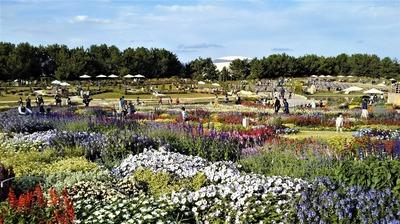 花の谷ゾーン1.jpg