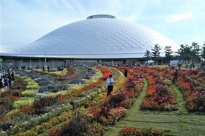 花の谷ゾーン:大花壇 2.jpg
