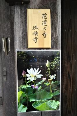 花蓮の寺.jpg