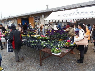 花販売所1.jpg