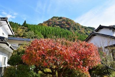 若山温泉の紅葉4.jpg