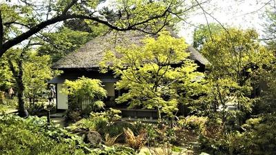 茅葺屋根の「憩いの家」1.jpg
