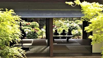 茅葺屋根の「憩いの家」2.jpg