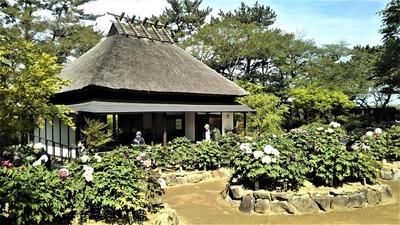 茅葺屋根の「憩いの家」4.jpg