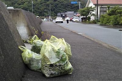 草・回収ゴミ2.jpg