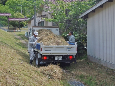 草刈り後2.jpg